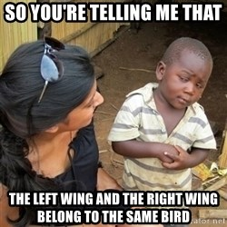 skeptical black kid - So you're telling me that the left wing and the right wing belong to the same bird