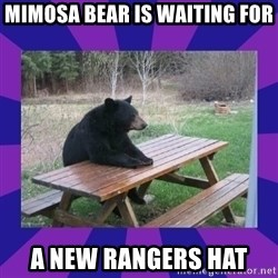 waiting bear - Mimosa Bear is waiting for a new rangers hat