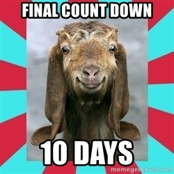 Gloating Goat - final count down 10 DAYS