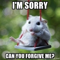 Sorry I'm not Sorry - I'm sorry Can you forgive me?