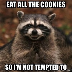 evil raccoon - eat all the cookies so i'm not tempted to