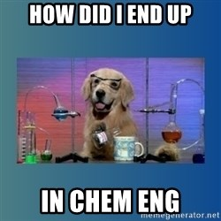 Chemistry Dog - HOW DID I END UP IN CHEM ENG