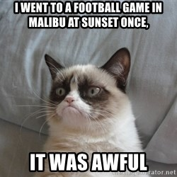 Grumpy cat good - I WENT TO A FOOTBALL GAME IN MALIBU AT SUNSET ONCE, IT WAS AWFUL
