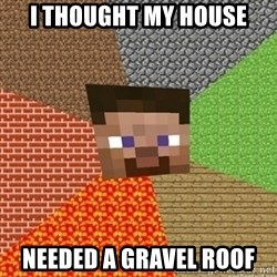 Minecraft Steve - I thought my house needed a gravel roof
