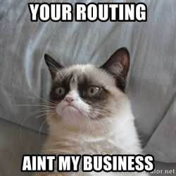 Grumpy cat good - your routing Aint my business