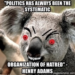 "Abortion Koala - ""politics has always been the systematic  organization of hatred"" - henry adams"