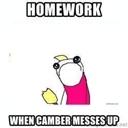 sad do all the things - Homework When camber messes up