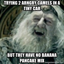 you have no power here - trying 2 arngry camels in a tiny car but they have no banana pancake mix