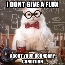 Chemistry Cat - I dont give a Flux about your boundary condition
