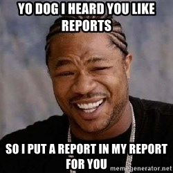 XZIBITHI - yo dog i heard you like reports so i put a report in my report for you