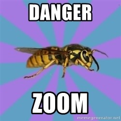 kyriarchy wasp - Danger Zoom