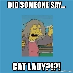 crazy cat lady simpsons - did someone say... CAT LADY?!?!