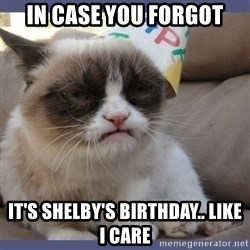 Birthday Grumpy Cat - In case you forgot It's Shelby's Birthday.. Like I care