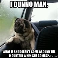 introspective pug - I dunno man, What if she doesn't come around the mountain when she comes?