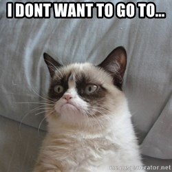 Grumpy cat good - i dont want to go to...
