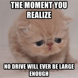 Super Sad Cat - The Moment you realize          No drive will ever be large enough
