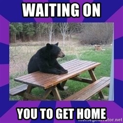 waiting bear - waiting on  you to get home