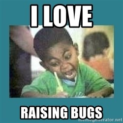I love coloring kid - I LOVE RAISING BUGS
