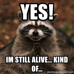 evil raccoon - YES! IM STILL ALIVE... kind of...