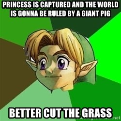 Link - Princess is captured and the world is gonna be ruled by a giant pig better cut the grass