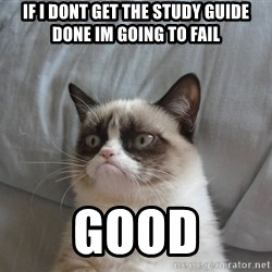 Grumpy cat good - if I dont get the study guide done Im going to fail GOOD