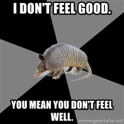 English Major Armadillo - I don't feel good. You mean you don't feel well.