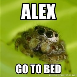 The Spider Bro - Alex go to bed