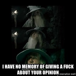 Confused Gandalf -  i have no memory of giving a fuck about your opinion