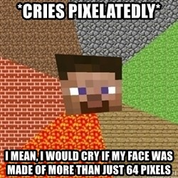Minecraft Steve - *cries pixelatedly* I mean, I would cry if my face was made of more than just 64 pixels
