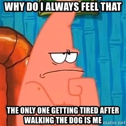 Patrick Wtf? - why do i always feel that  the only one getting tired after walking the dog is me