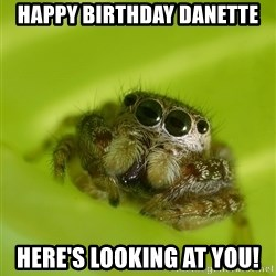 The Spider Bro - Happy Birthday Danette Here's looking at you!