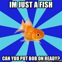 Absentminded Goldfish - im just a fish can you put bob on ready?