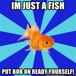 Absentminded Goldfish - im just a fish put bob on ready yourself!