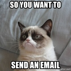 Grumpy cat good - so you want to  send an email