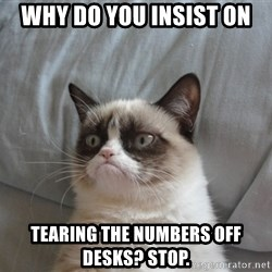 Grumpy cat good - why do you insist on tearing the numbers off desks? stop.