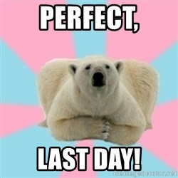 Perfection Polar Bear - PERFECT, LAST DAY!