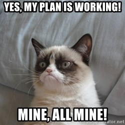 Grumpy cat good - Yes, my plan is working! Mine, all mine!