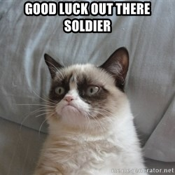 Grumpy cat good - Good luck out there soldier