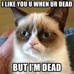 not funny cat - I like you u when ur dead but I'm dead