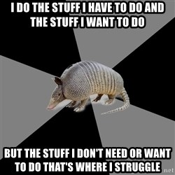 English Major Armadillo - I do the stuff I have to do AND the stuff I want to do but the stuff I don't NEED OR WANT to do that's where i struggle