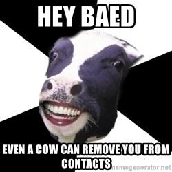 Restaurant Employee Cow - hey baed even a cow can remove you from contacts