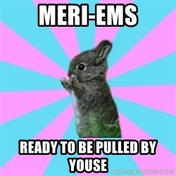 yAy FoR LifE BunNy - meri-ems ready to be pulled by youse