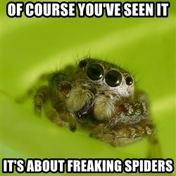 The Spider Bro - Of course you've seen it it's about Freaking spiders