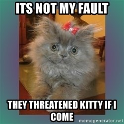 cute cat - ITS NOT MY FAULT THEY THREATENED KITTY IF I COME