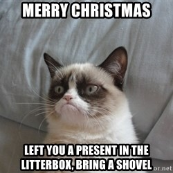 Grumpy cat good - Merry Christmas Left you a present in the litterbox, bring a shovel