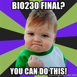 Victory baby meme - Bio230 Final? You can do this!