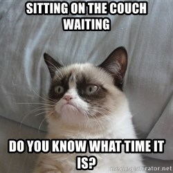 Grumpy cat good - sitting on the couch waiting do you know what time it is?