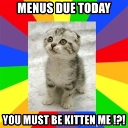 Cute Kitten - Menus Due today you must be kitten me !?!
