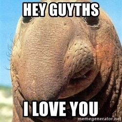 Lolwut - hey guyths i love you