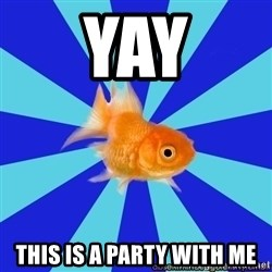 Absentminded Goldfish - Yay This is a party with me